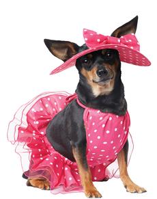 Déguisement Diva glamour chien